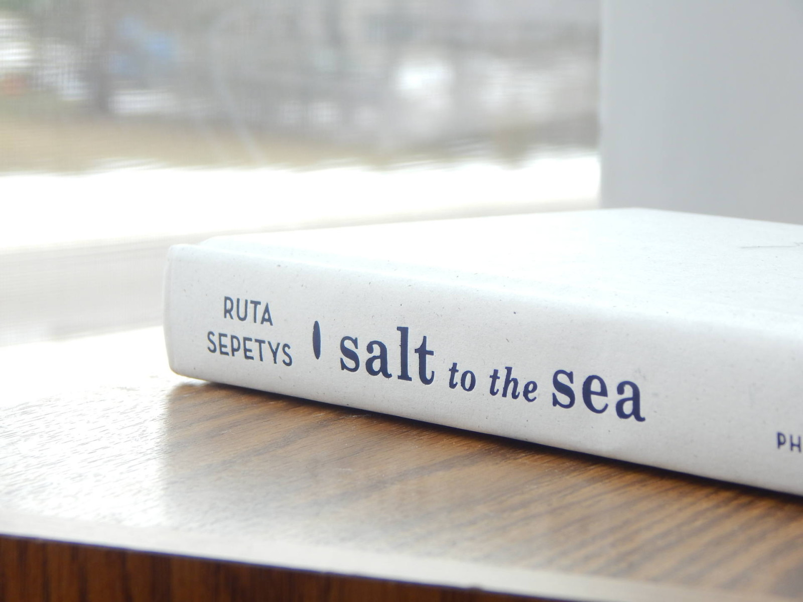 salt to the sea interview giveaway