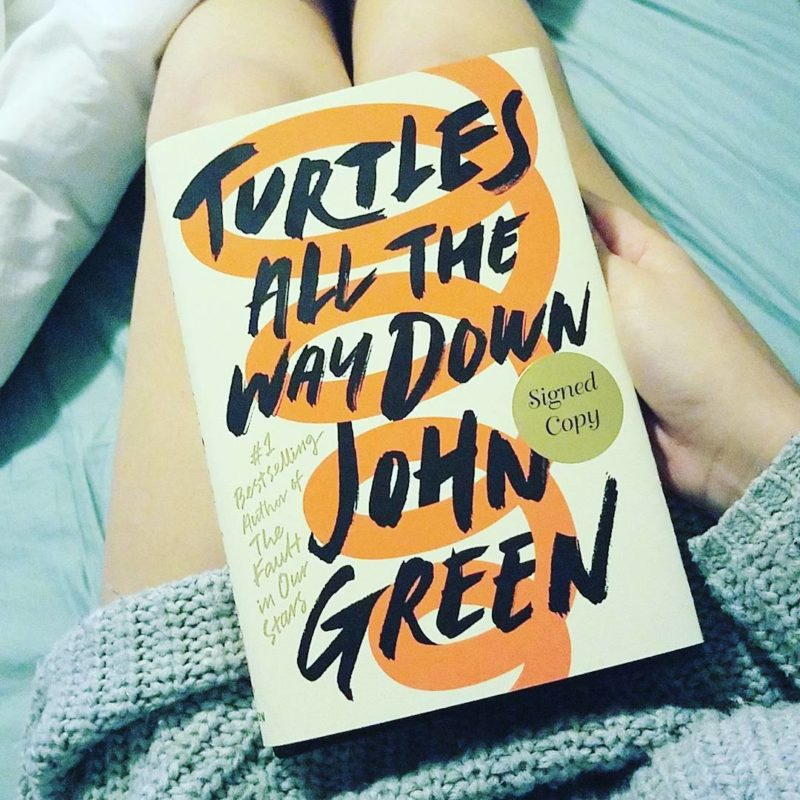 Turtles All the Way Down Book Review Ownvoices